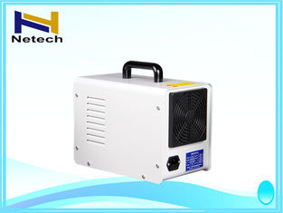 Ozone equipment cleanr Food Ozone Generator 110V / 220V
