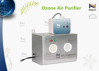 12000mg/Hr Wall Mounted Commercial Ozone Generator For Food Cold Storage