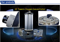 Oxygen Source Ozone Generator For Industry Wastewater Treatment O2 Concentrator