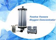 China 3L - 15L PSA Oxygen Concentrator Parts Oxygen Sieve For Aquaculture factory