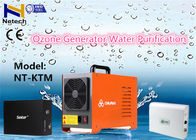 China 220V ozone generator water treatment 5000mg/Hr For Household Water Sterilizing factory