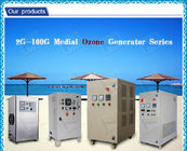 O3 clean air industrial ozone generator