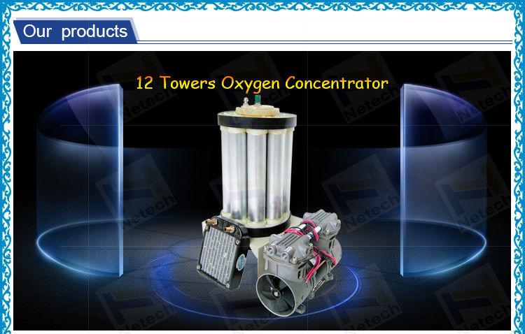 Oxygen generator repair