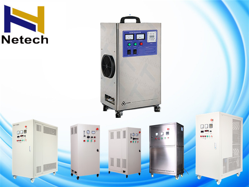 ISO Water Ozone Generator For Bathtub And SPA Water Disinfection 2g ...