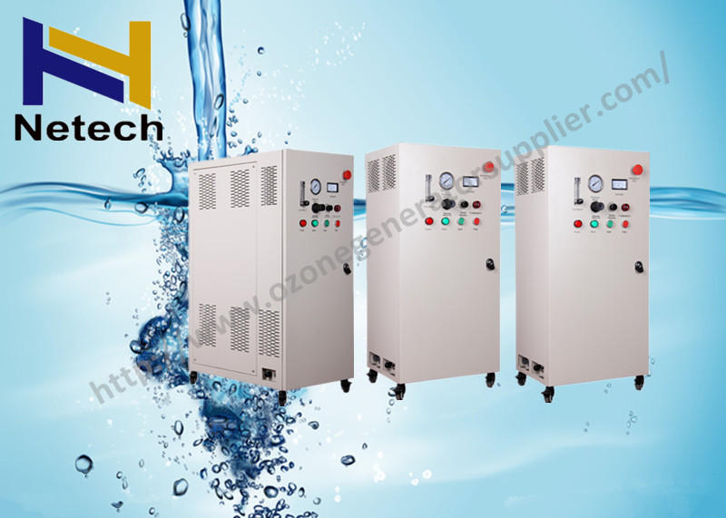 10G - 50G Ozone Sterilization Treatment Machine Water Ozone For Swimming Pool